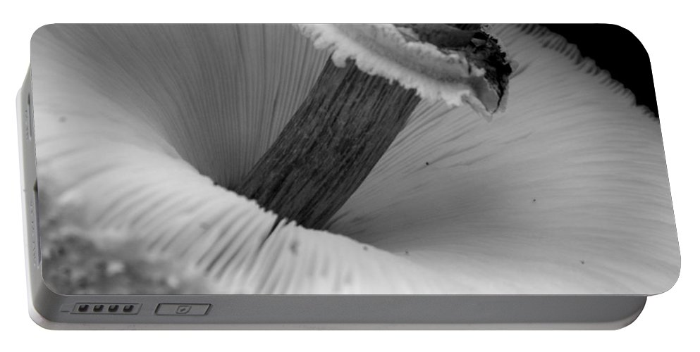 Bw Portable Battery Charger featuring the photograph Wild Mushroom- B And W by Arlane Crump