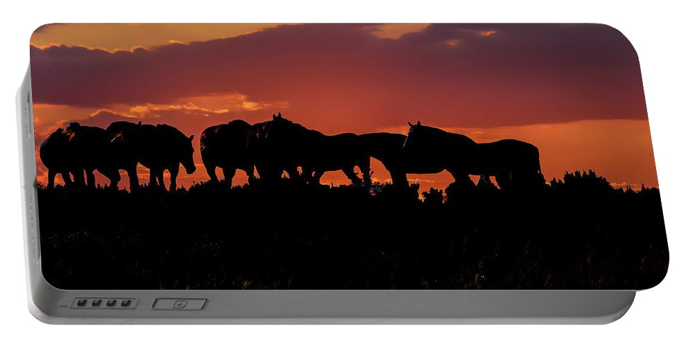 Horses Portable Battery Charger featuring the photograph Wild Mustangs At Sunset by Tommy Anderson