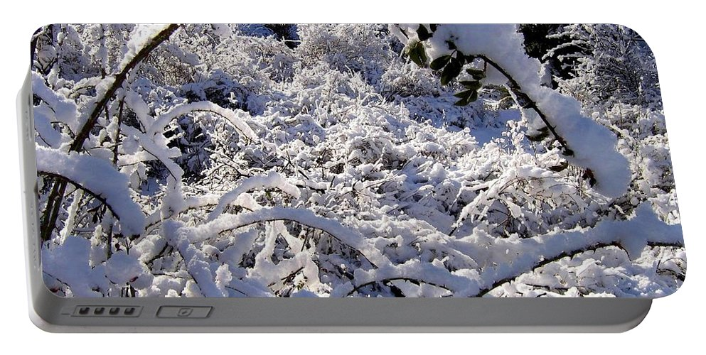 Snow Portable Battery Charger featuring the photograph Wild Rose Arch by Will Borden