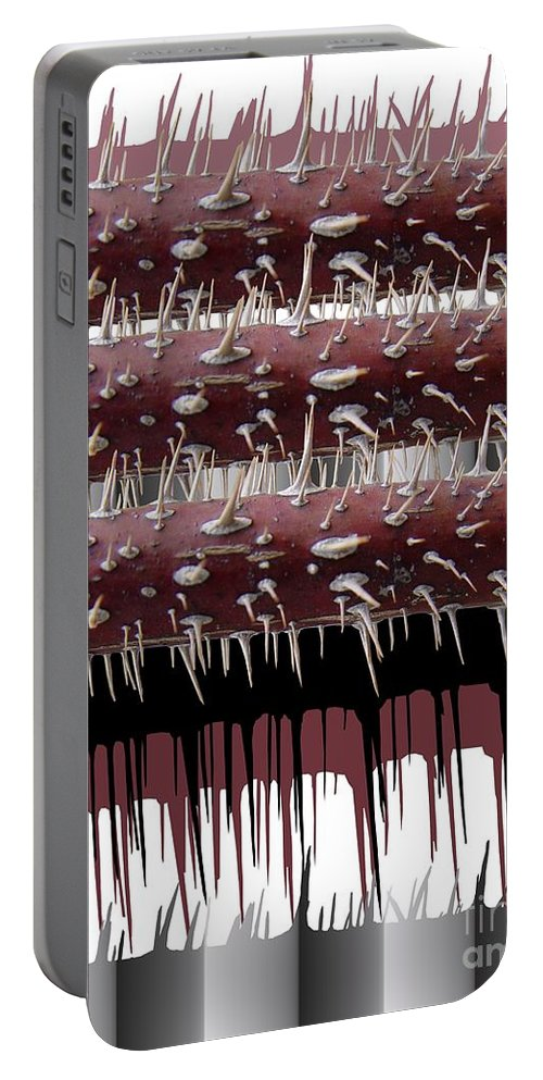 Wild Rose Portable Battery Charger featuring the digital art Wild Rose by Ron Bissett