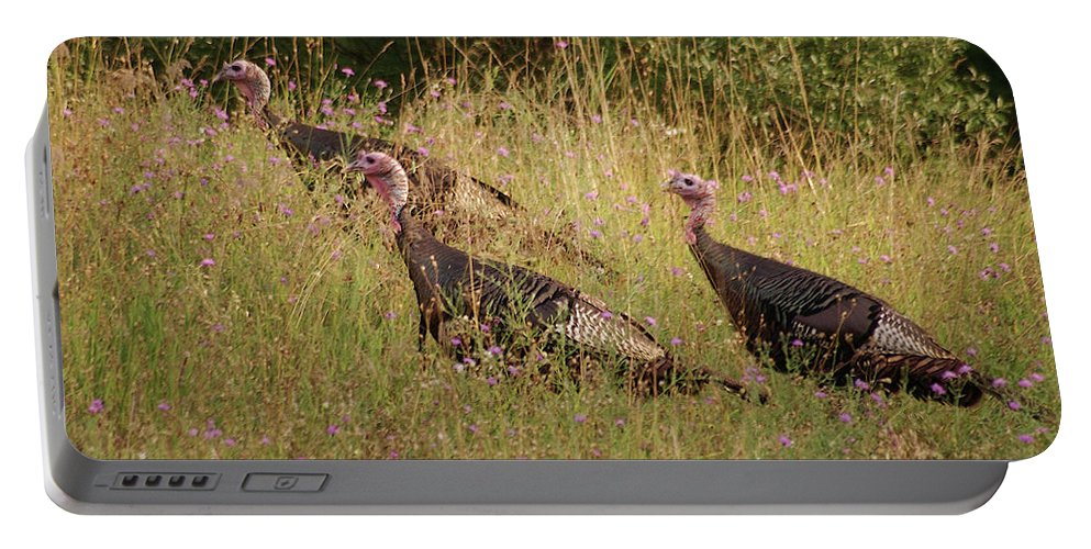 Wild Portable Battery Charger featuring the photograph Wild Turkeys by Michael Peychich