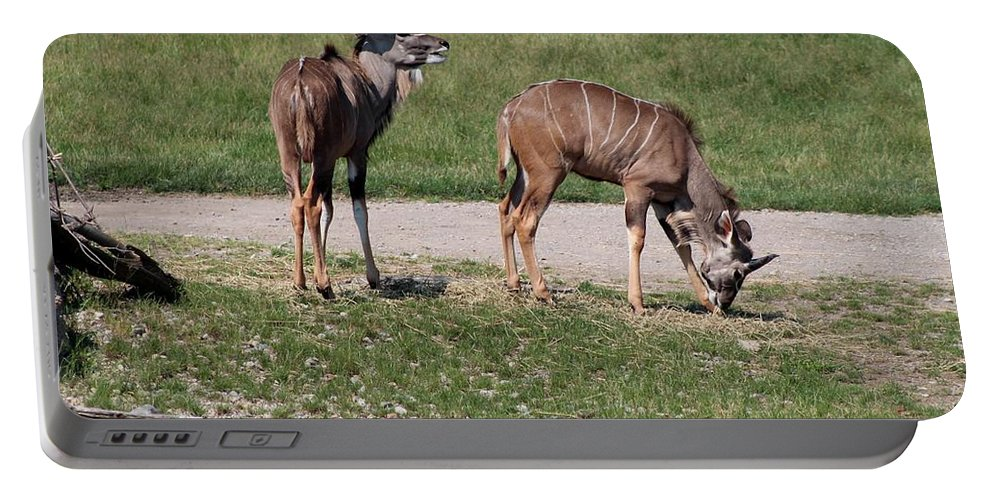 Wildebeest Portable Battery Charger featuring the photograph Wildebeest II by Michiale Schneider