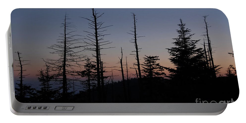 Wilderness Portable Battery Charger featuring the photograph Wilderness by David Lee Thompson