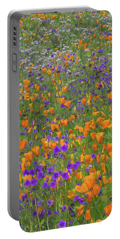 Wildflowes Portable Battery Charger featuring the photograph Wildflower Dream by Tim Fitzharris