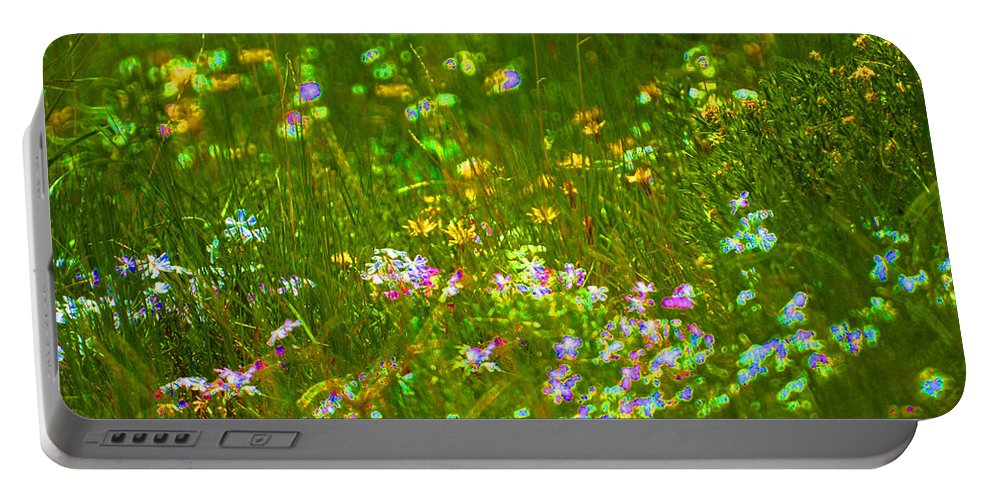 Wildflower Portable Battery Charger featuring the photograph Wildflower Field by Heather Coen