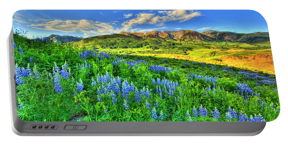 Wildflowers Portable Battery Charger featuring the photograph Wildflower Wonder by Scott Mahon