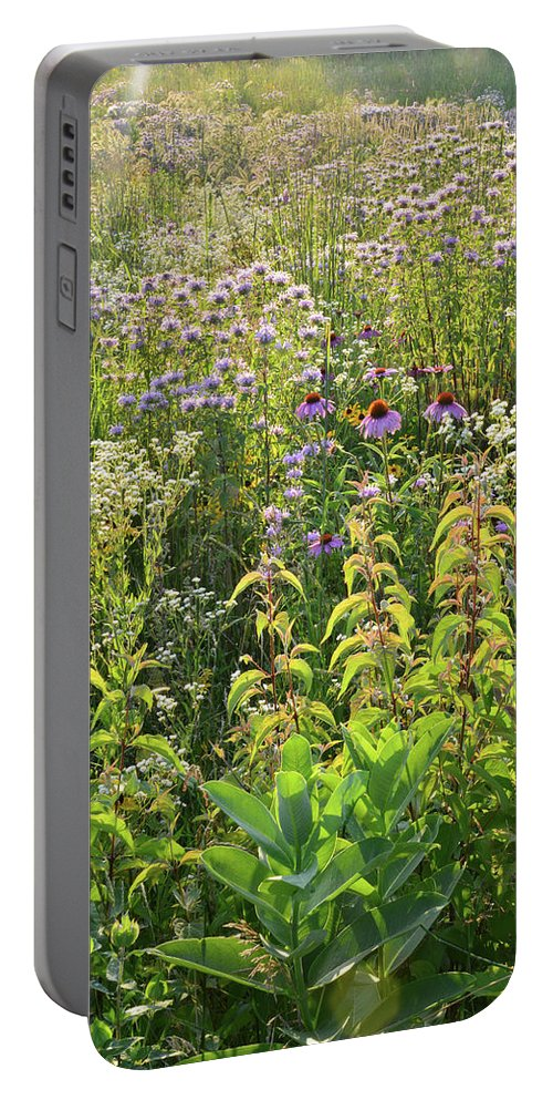 Black Eyed Susan Portable Battery Charger featuring the photograph Wildflowers Glow In Setting Sun Light by Ray Mathis