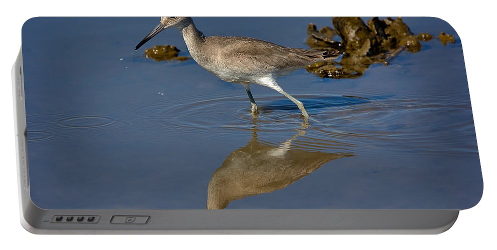 Nature Portable Battery Charger featuring the photograph Willet Searching For Food In An Oyster Bed by Louise Heusinkveld