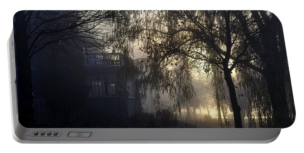 Fog Portable Battery Charger featuring the photograph Willow In Fog by Tim Nyberg