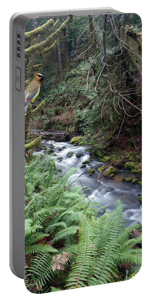 Nature Portable Battery Charger featuring the photograph Wilson Creek #14 With Added Cedar Waxwing by Ben Upham III