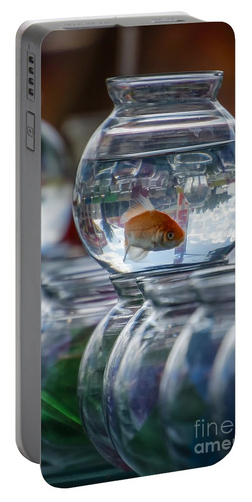 Goldfish Portable Battery Charger featuring the photograph Win A Goldfish by Joann Long
