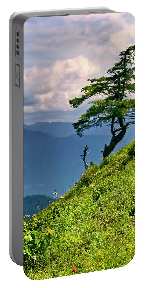 Northwest Mountains Portable Battery Charger featuring the photograph Wind Sculpted Conifer by Albert Seger