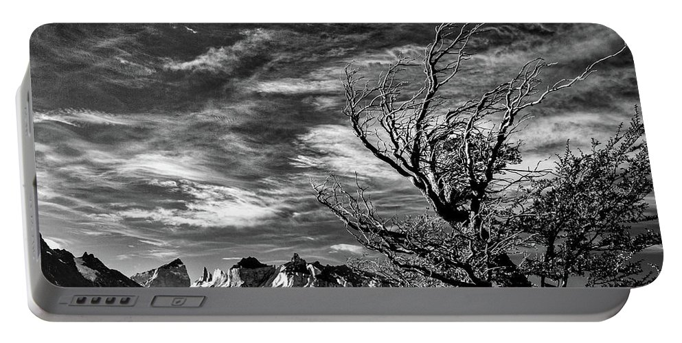 Tree Portable Battery Charger featuring the photograph Wind Shaped Tree #2 - Patagonia by Stuart Litoff