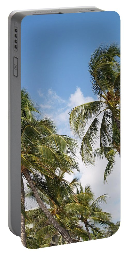 Scenic Portable Battery Charger featuring the photograph Wind Though The Trees by Athala Carole Bruckner