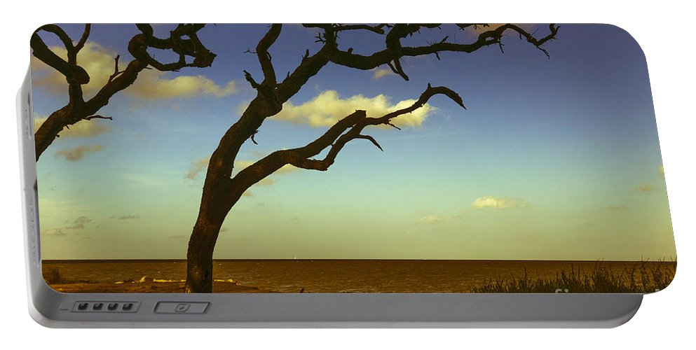 Driftwood Beach Portable Battery Charger featuring the photograph Windswept by Amanda Sinco