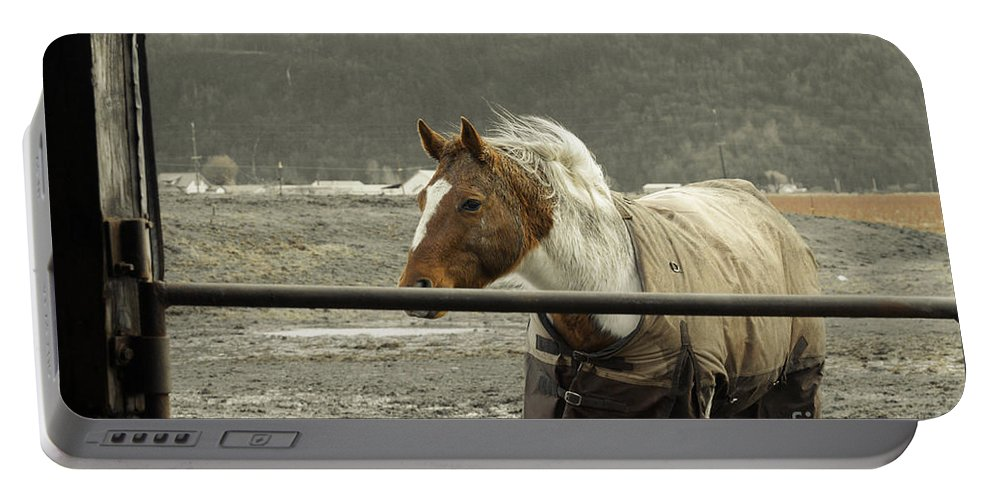 Clay Portable Battery Charger featuring the photograph Windy In Mane by Clayton Bruster