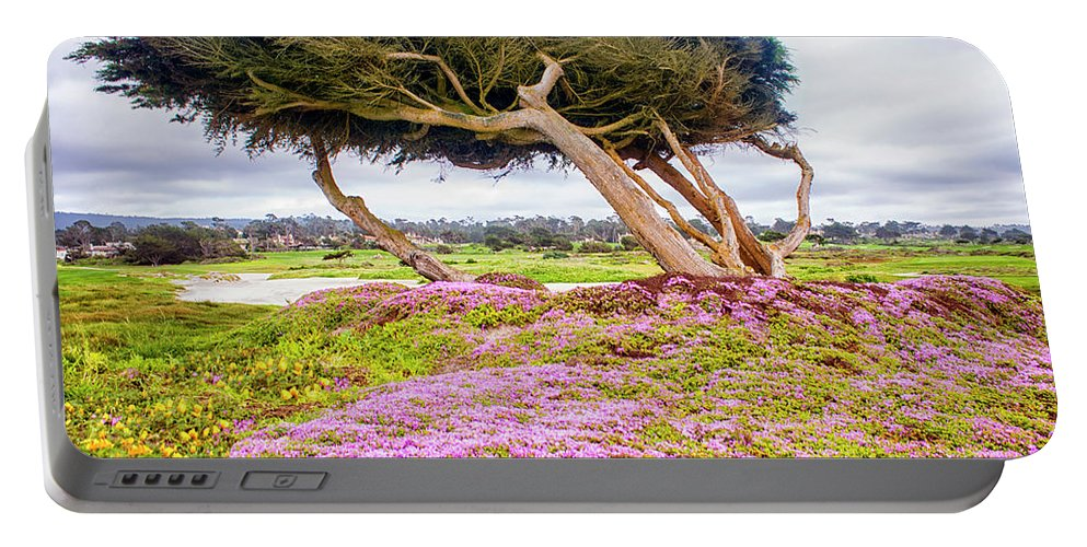 Big Sur Portable Battery Charger featuring the photograph Windy Tree by Gabriel Jardim