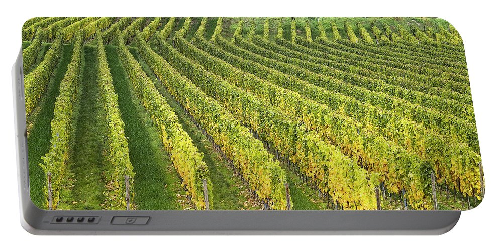 Heiko Portable Battery Charger featuring the photograph Wine Growing by Heiko Koehrer-Wagner