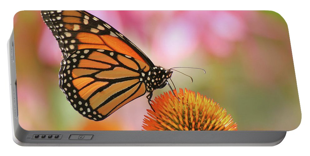 Butterfly Portable Battery Charger featuring the photograph Winged Beauty by Doris Potter
