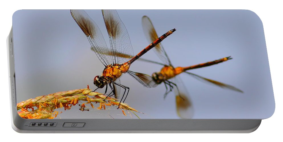 Animal Portable Battery Charger featuring the photograph Wingman by Robert Frederick