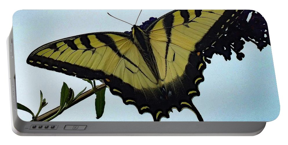 Eastern Tiger Swallowtail Portable Battery Charger featuring the photograph Wings Are Perfect Match - Eastern Tiger Swallowtail by Cindy Treger