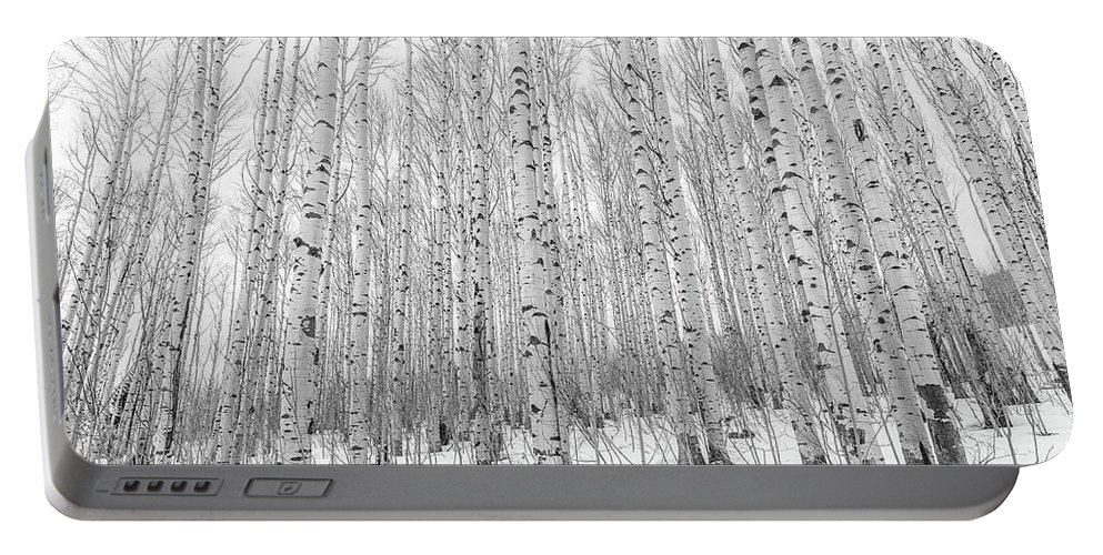 Colorado Portable Battery Charger featuring the photograph Winter Aspens by Eric Glaser