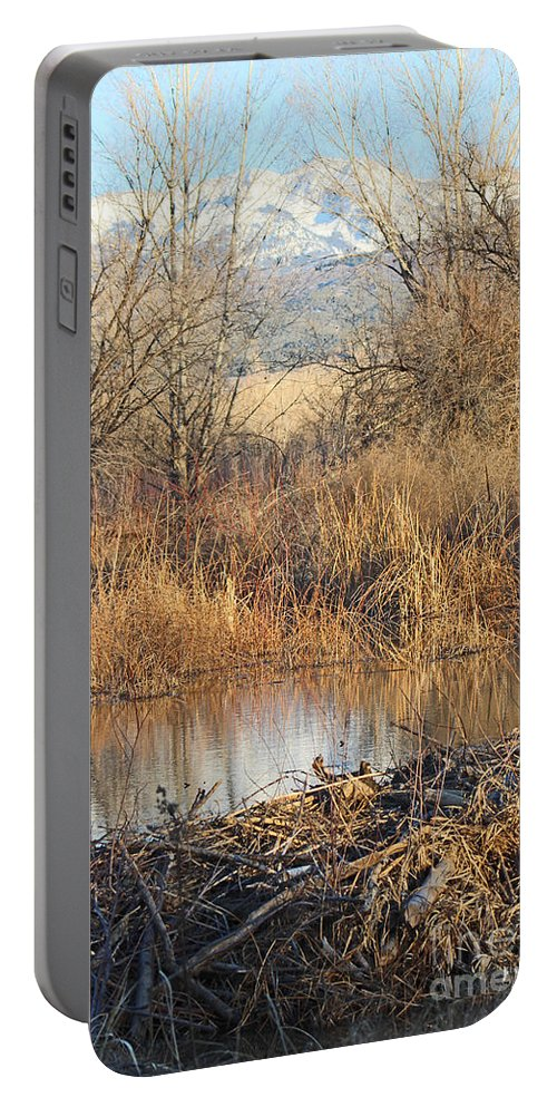 Sunset Portable Battery Charger featuring the photograph Winter Beaver Dam Charm Co   by Dale Jackson