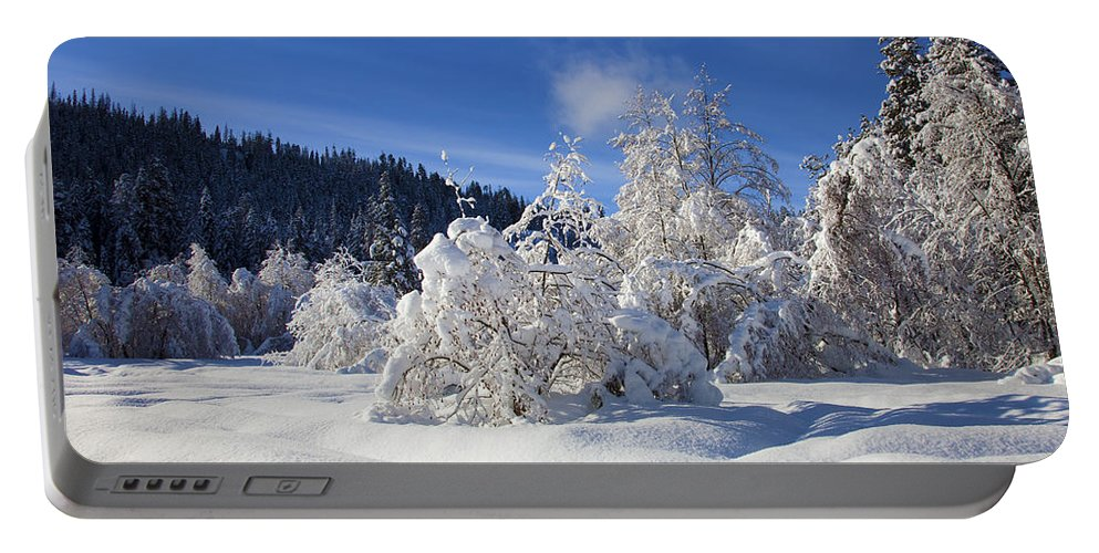 Snow Portable Battery Charger featuring the photograph Winter Blanket by Mike Dawson