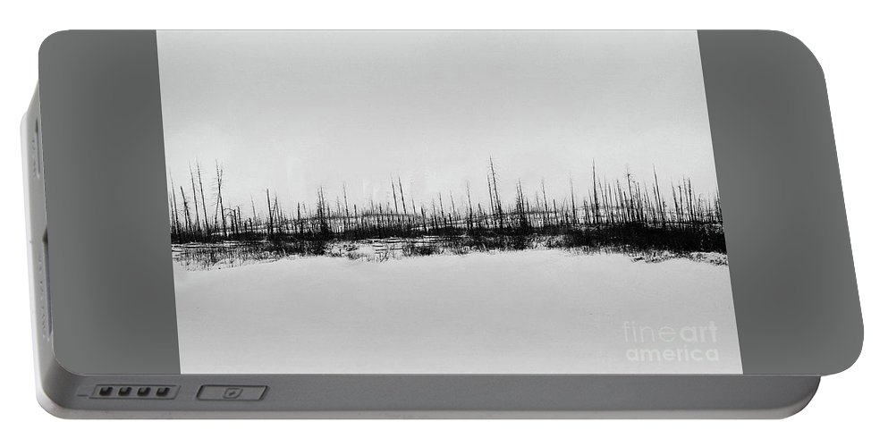 Photography Portable Battery Charger featuring the photograph Winter Branches by Anthony Djordjevic