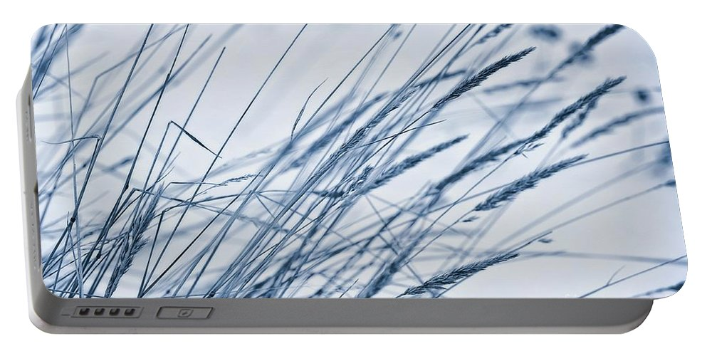 Breeze Portable Battery Charger featuring the photograph Winter Breeze by Priska Wettstein