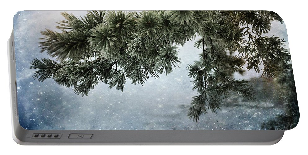Fog Portable Battery Charger featuring the photograph Winter Decor by Randi Grace Nilsberg