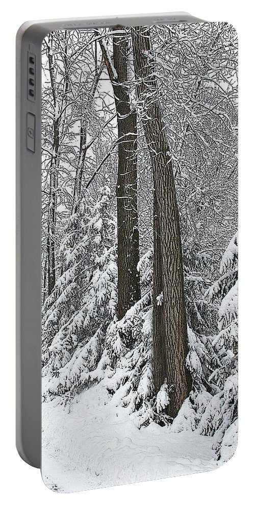 Winter Portable Battery Charger featuring the photograph Winter Drive by Tom Reynen