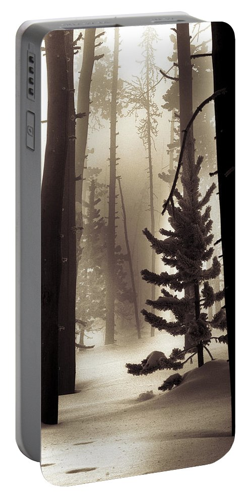 Winter Portable Battery Charger featuring the photograph Winter Forest by Leland D Howard