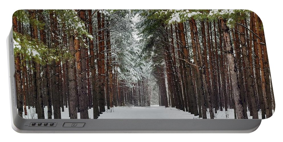 Attractive Portable Battery Charger featuring the photograph Winter Forest by Vadzim Kandratsenkau