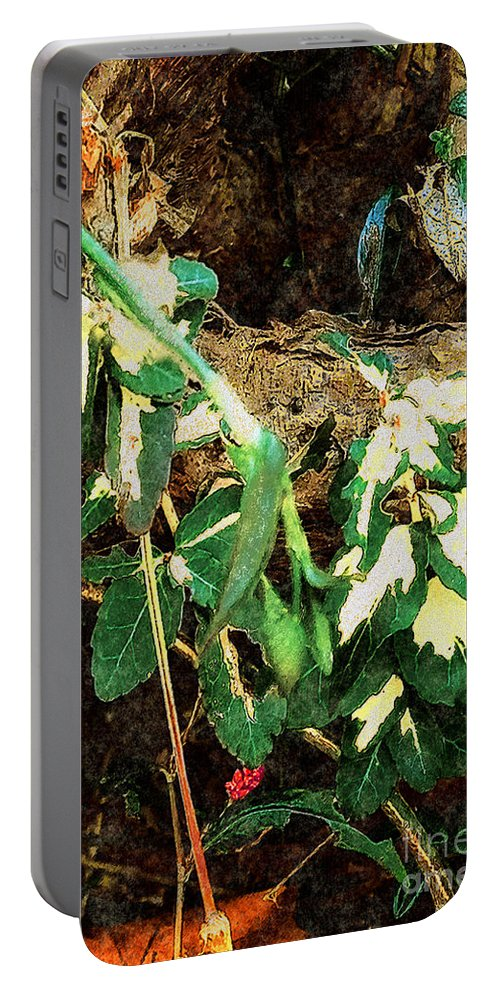 Autumn Portable Battery Charger featuring the painting Winter Hideout by RC DeWinter