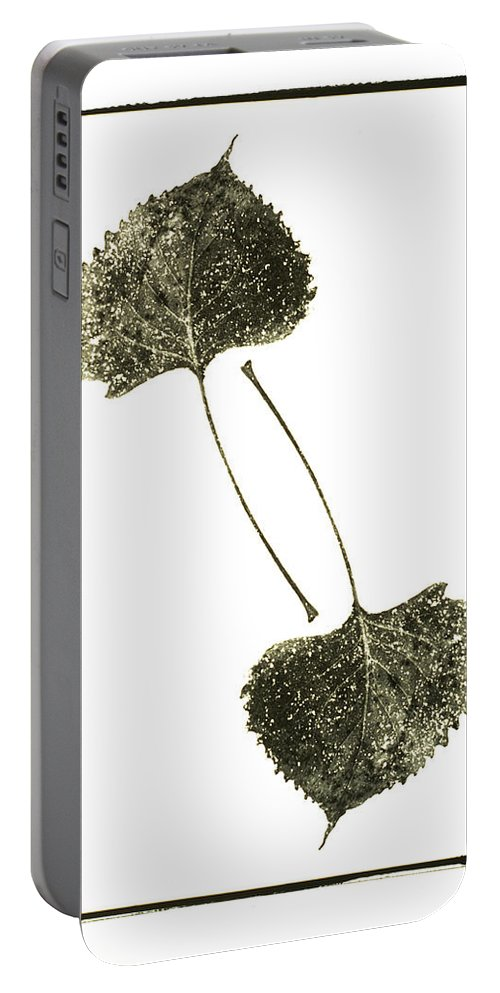 Fine Art Photography Portable Battery Charger featuring the photograph Winter Leaf by Jerry McElroy