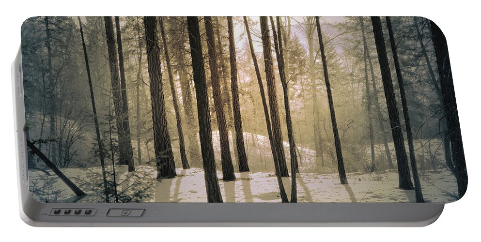 Winter Portable Battery Charger featuring the photograph Winter Light by Tara Turner