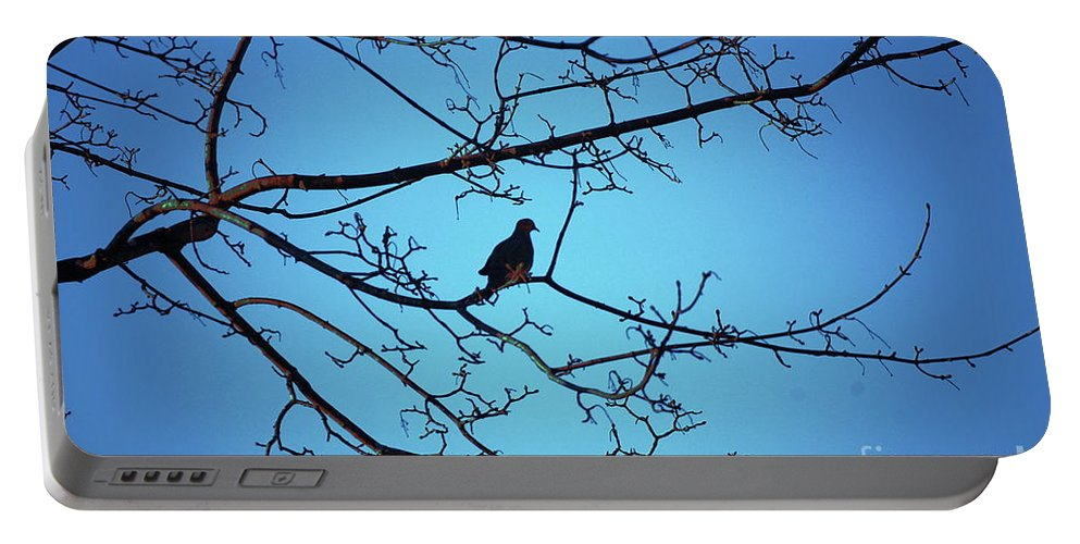 Mourning Dove Portable Battery Charger featuring the photograph Winter Mourning by Faith Harron Boudreau
