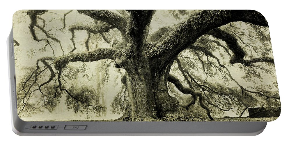 Oak Tree Portable Battery Charger featuring the photograph Winter Oak by Scott Pellegrin