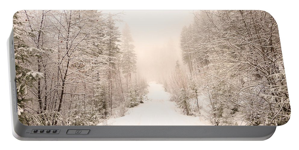 Winter Portable Battery Charger featuring the photograph Winter Quiet by Tara Turner
