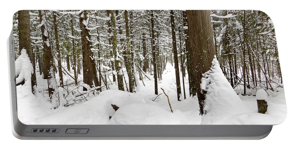 Winter Portable Battery Charger featuring the photograph Winter Scene Print by Gwen Gibson