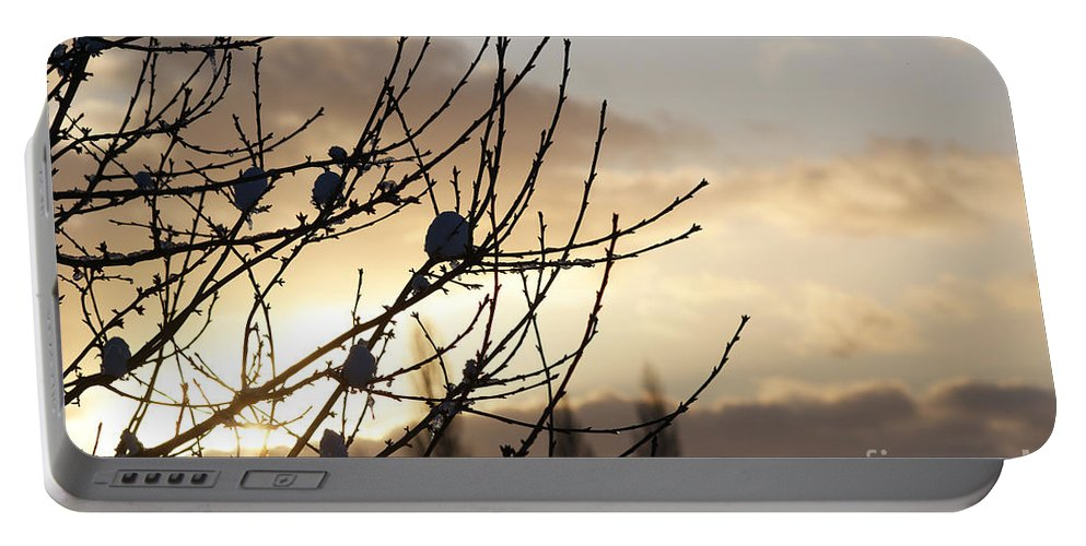 Snow Portable Battery Charger featuring the photograph Winter Sun 3 by Carol Lynch