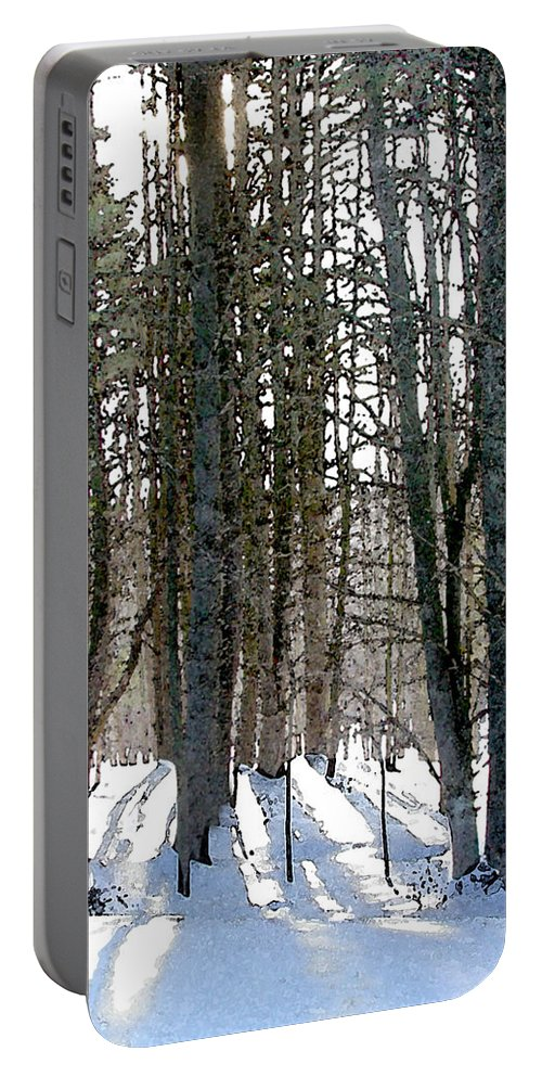 Winter Portable Battery Charger featuring the painting Winter Sun by Paul Sachtleben