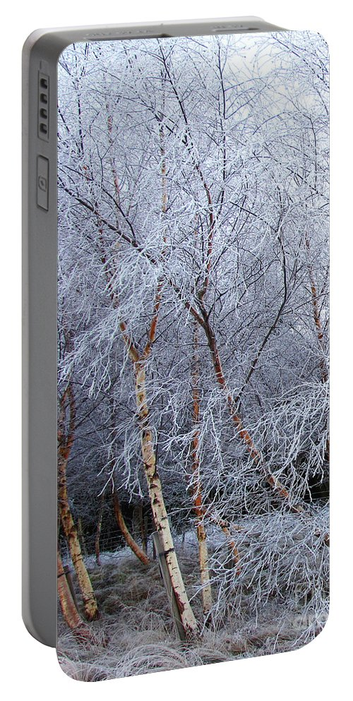Trees Portable Battery Charger featuring the photograph Winter Trees by Jacqi Elmslie