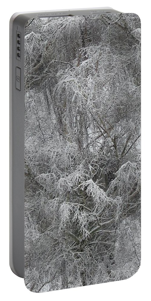 Winter Portable Battery Charger featuring the photograph Winter Trees by Tim Allen