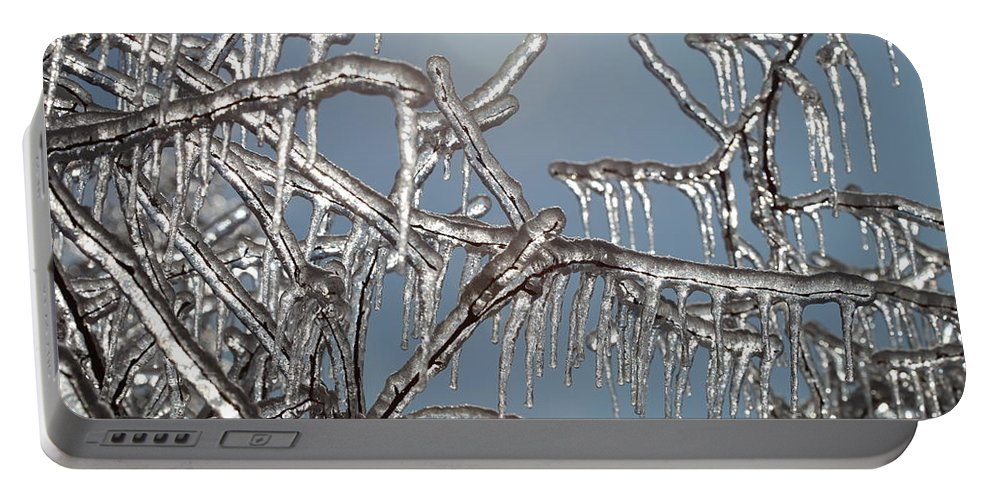 Winter Portable Battery Charger featuring the photograph Winter Warmth by Nadine Rippelmeyer