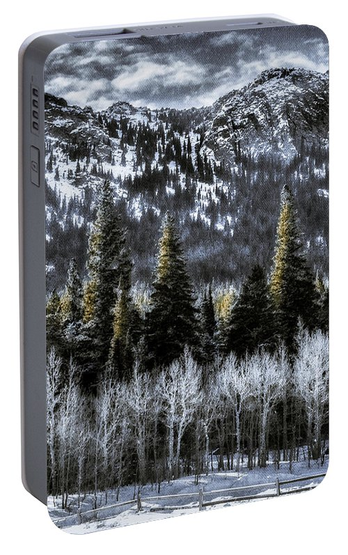 Winter Prints Portable Battery Charger featuring the photograph Winter Woods by Garett Gabriel