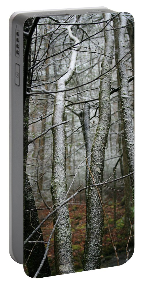 Tree Woods Forest Wood Snow White Green Winter Season Nature Cold Portable Battery Charger featuring the photograph Wintery Day by Andrei Shliakhau