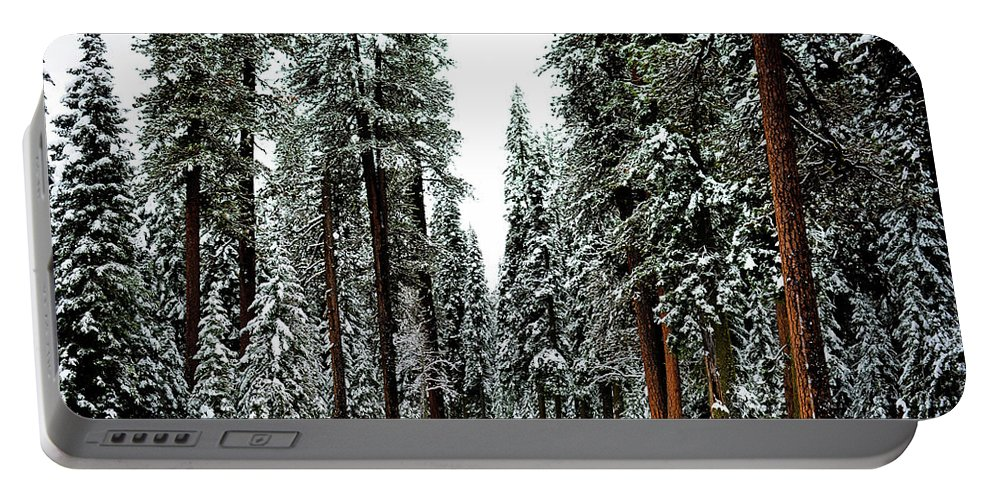 Landscape Portable Battery Charger featuring the photograph Wintry Forest Drive by Koushik C