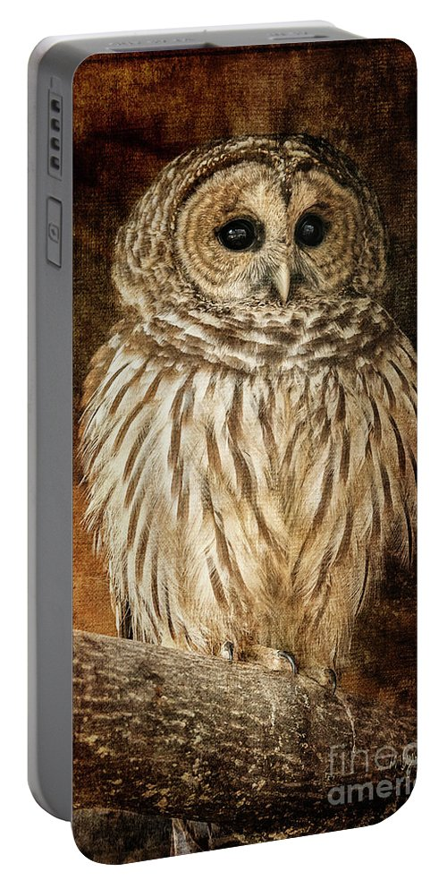 Owl Portable Battery Charger featuring the photograph Wisdom by Lois Bryan